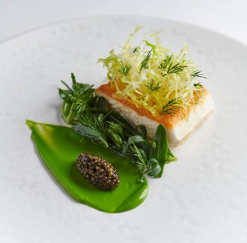 Image 6 from Frog by Adam Handling's image gallery'
