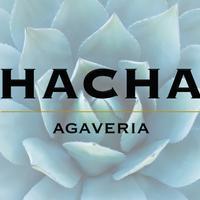 Hacha Bar's logo