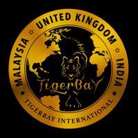 Tigerbay Shisha Lounge's logo