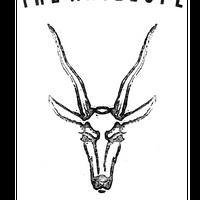 The Antelope's logo