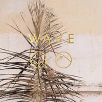 WAVE's logo